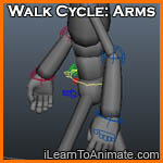 Walk Cycle: Arms