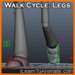 Walk Cycle: Legs